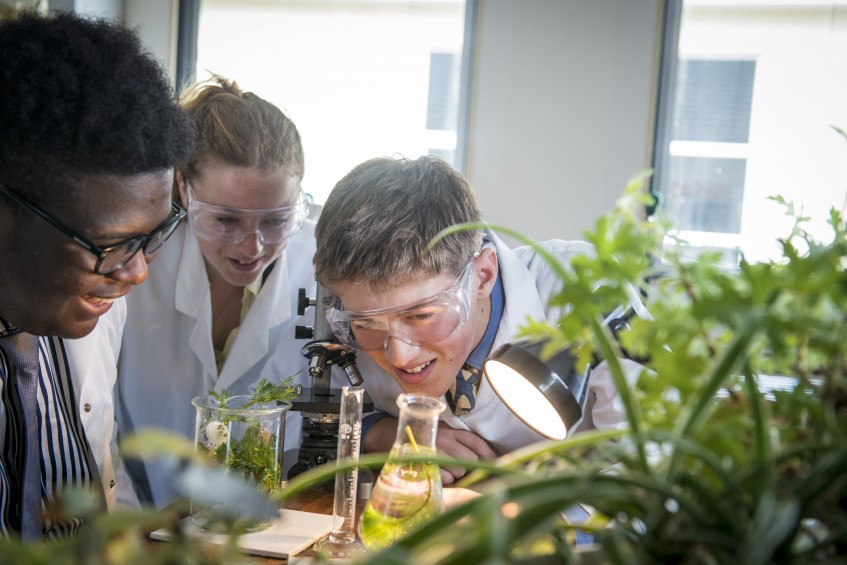 Biology - Science at Truro School, Cornwall, south-west